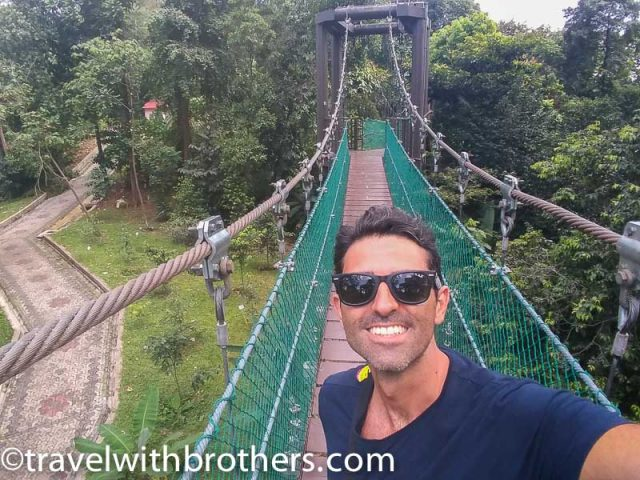 Kuala Lumpur, the Canopy walkway at Eco Forest park