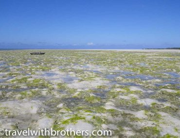 matemo island mozambique