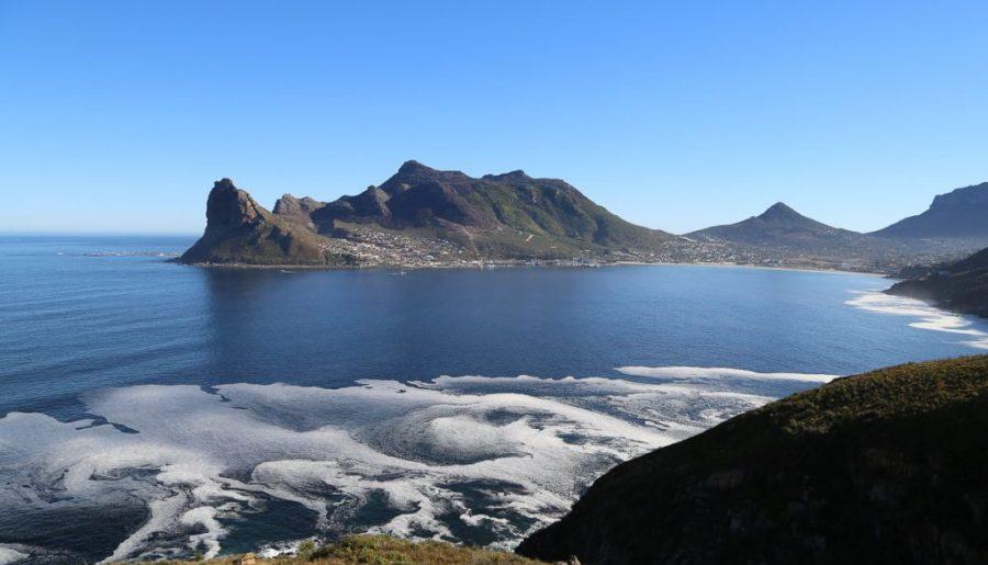 Sudafrica, cosa fare e vedere nella Penisola del Capo