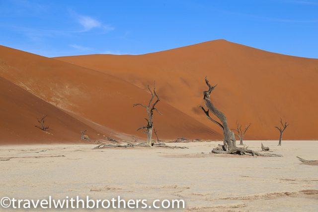 Namibia, Namib Naukluft National Park- Deadvlei