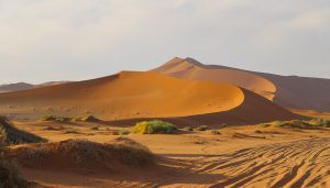 Namibia, the high dunes of Sossusvlei