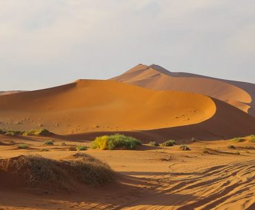Namibia, Sossusvlei: the highest dunes in the World