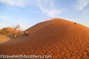 Namibia, Namib Naukluft National Park- Dune 45
