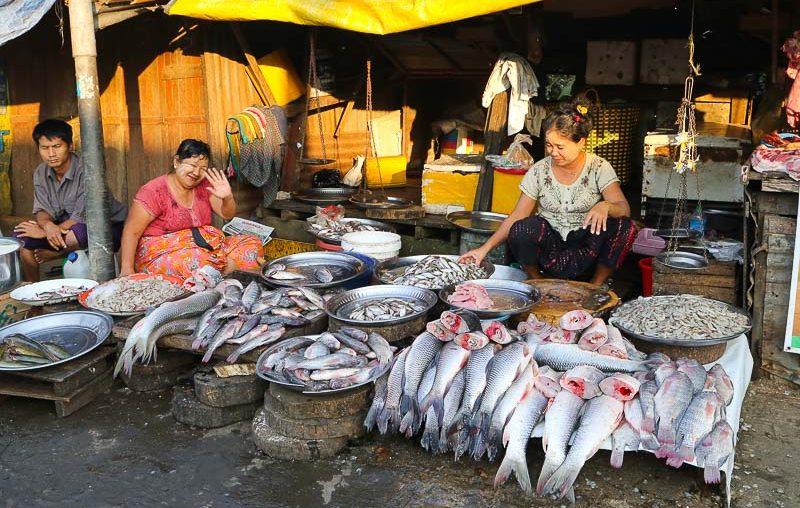 Yangon, a fish stall in Thirimingala Market