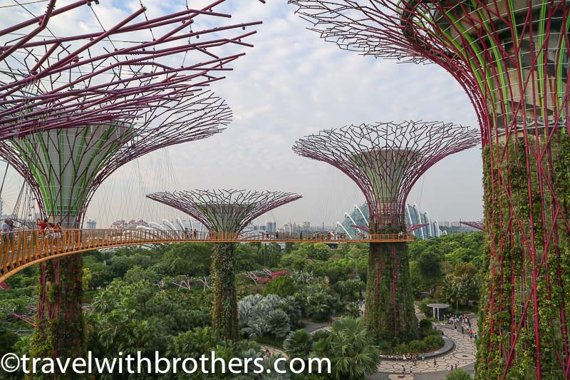 Supertrees Grove in Garden by the Bay, Singapore