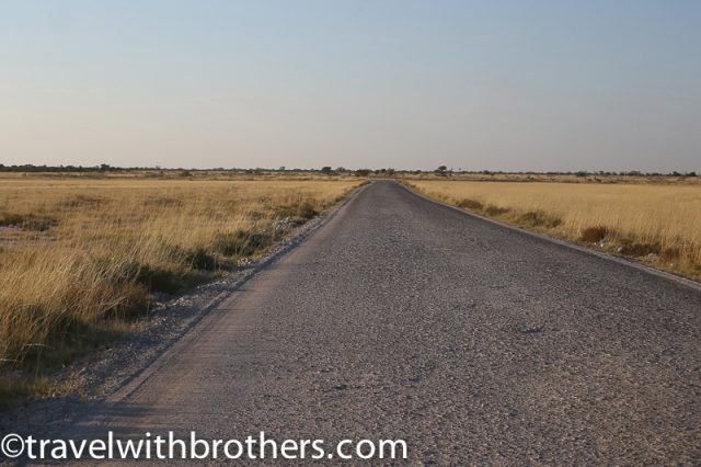 Etosha National Park track road
