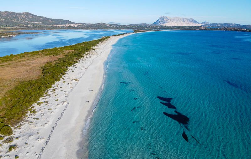 San Teodoro, la Cinta beach