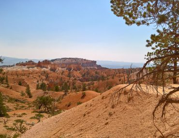 Bryce canyon -Queen's/navajo loop combination trail
