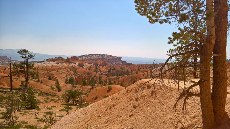 Bryce canyon -Queen's/navajo loop combination trail