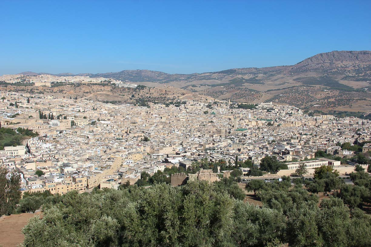 View of the old Medina of Fes