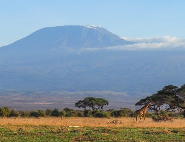 Amboseli NP, a magnificent Mount Kilimanjaro view