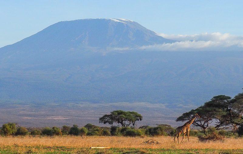 Amboseli NP, a magnificent Mount Kilimanjaro view