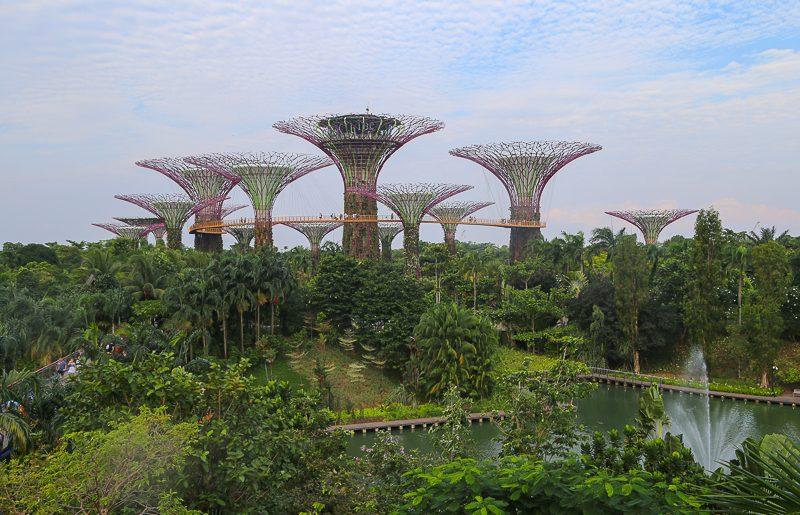 Guida alla visita di Singapore