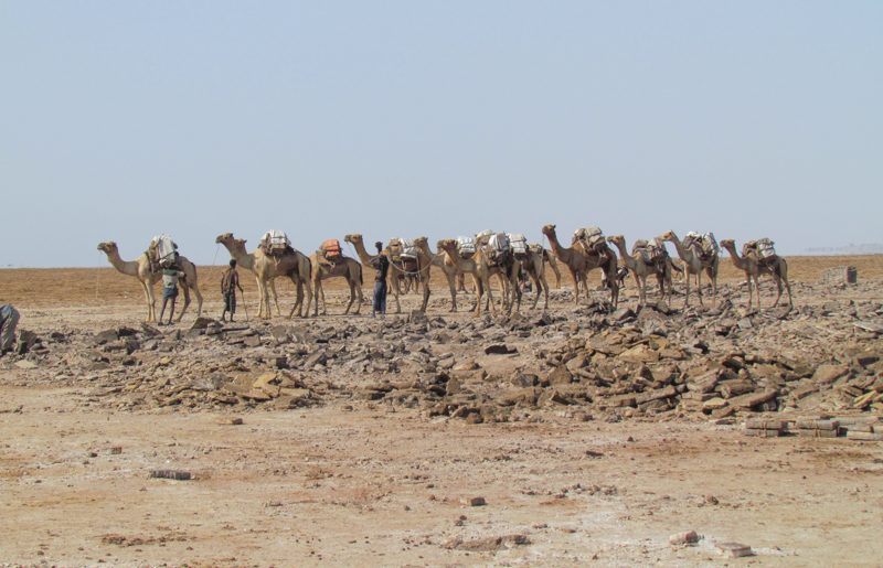 Ethiopia, the salt plain in the Danakil depression