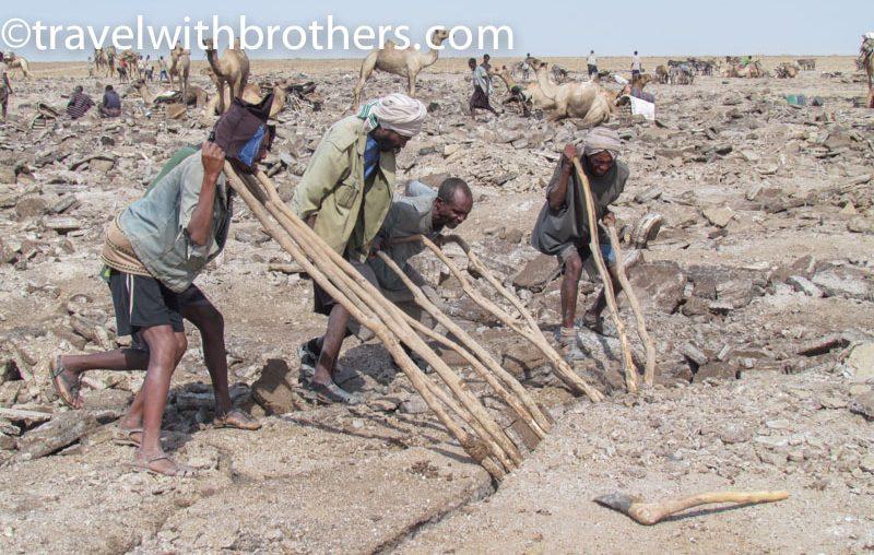 Dancalia, lavoratori Afar intenti ad estrarre una lastra di sale