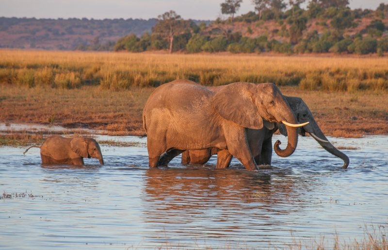Africa, 10  epic National Parks not to miss